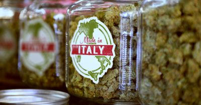 Picture of Cannabis in Jars for a blog that asks Is Rome the new Amsterdam
