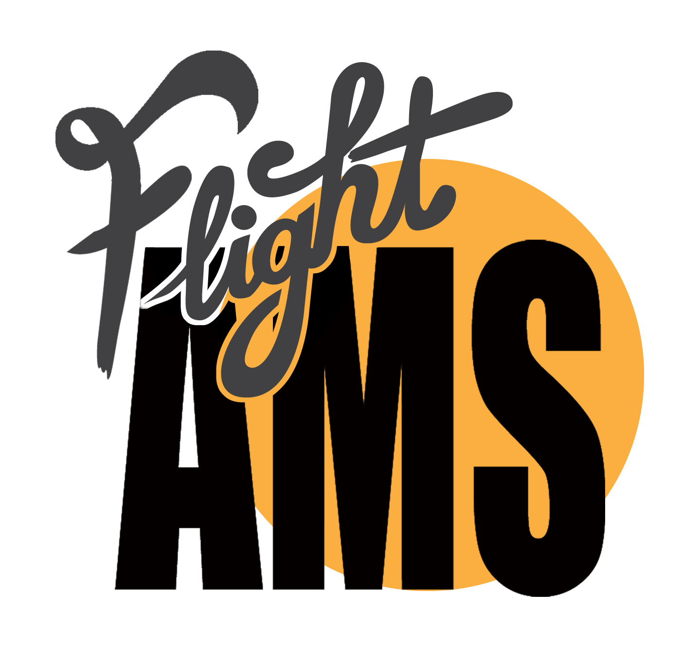 Flight AMS Logo